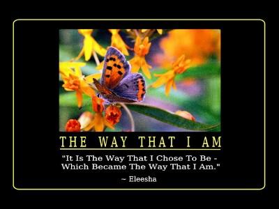 ~ Life Transforming Inspiration ~